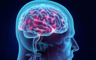 La neurociencia nos explica como cambiar